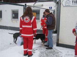 Rettungshunde im Einsatz fuer Tierheim