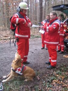 Flächenhundeprüfung - immer wieder spannend!