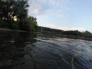 Staffelausfahrt mit dem Kanu
